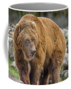 Very Big Bear Coffee Mug