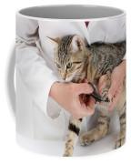 Vet Clipping Kittens Claws Coffee Mug