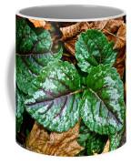 Vibrant Ground Cover  Coffee Mug