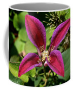 Vibrant Star Coffee Mug
