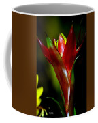 Vibrantly Rich In Red Coffee Mug