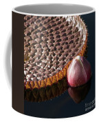 Victoria Amazonica Giant Water Lily Coffee Mug