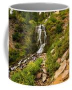 Vidae Falls Landscape Coffee Mug