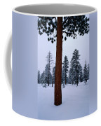 View Of A Ponderosa Pine Surrounded Coffee Mug