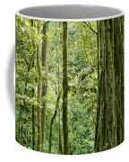 View Within A Rain Forest Coffee Mug