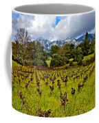 Vineyards And Mt St. Helena Coffee Mug by Garry Gay