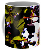 Virginia Creeper Fruit Coffee Mug