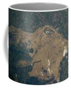 Vistula River Flooding, Southeastern Coffee Mug by NASA/Science Source