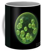 Volvox Coffee Mug by Russell Kightley