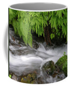 Wahkeena Falls One Coffee Mug