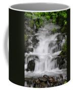 Wahkeena Falls Two Coffee Mug