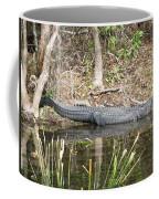 Wakulla Springs Alligator Coffee Mug