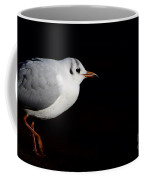Walking Bird Coffee Mug