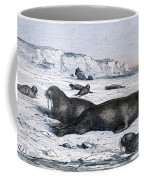 Walruses On Ice Field Coffee Mug