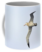 Wandering Albatross Coffee Mug