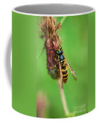 Wasp On Plant Coffee Mug