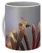 Waspage In The Kangaroo Paw Coffee Mug