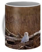 Watcher Coffee Mug