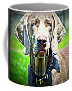 Watchful Weimaraner  Coffee Mug