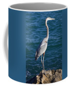 Watching For Fish Coffee Mug