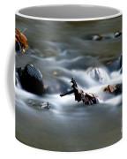 Water Cascades Coffee Mug