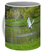 Water Dancer Coffee Mug