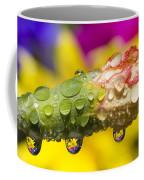 Water Drops On A Budding Flower Coffee Mug