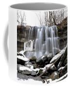 Water Falls At Rock Glen Coffee Mug