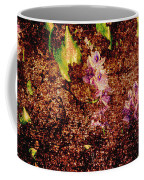 Water Flowers Vietnam Coffee Mug by Skip Nall