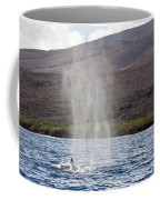Water From A Whale Blowhole Coffee Mug