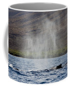 Water From A Whale Blowhole II Coffee Mug