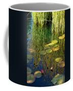 Water Lilies Reflection Coffee Mug