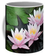 water lily 88 Sunny Pink Water Lily with Reflection Coffee Mug
