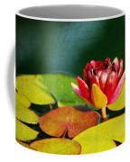 Water Lily II Coffee Mug