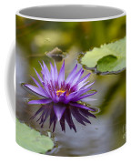 Water Lily Kissing The Water Coffee Mug