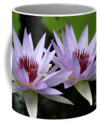 Water Lily Twins Coffee Mug