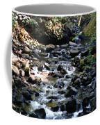 Water Over Rocks Coffee Mug