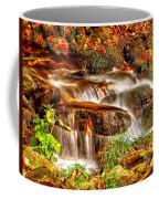 Water Over The Rocks Coffee Mug