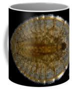 Water Penny Beetle Larva Coffee Mug