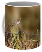 Water Pipit On Post Coffee Mug