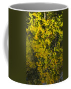 Water Reflection Abstract Autumn 1 F Coffee Mug