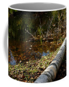 Water Seeing Coffee Mug
