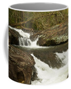 Waterfall 202 Coffee Mug