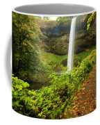 Waterfall Along The Trail Coffee Mug