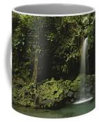 Waterfall And Emerald Pool In A Lush Coffee Mug by Tim Laman