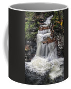 Waterfall At Ricketts Glen Coffee Mug