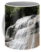 Waterfall At Treman State Park Ny Coffee Mug