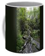 Waterfall In The Forest Coffee Mug