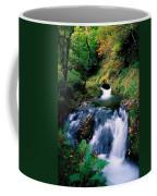 Waterfall In The Woods, Ireland Coffee Mug