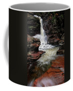 Waterfall Ricketts Glen Coffee Mug